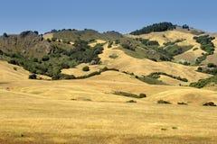 Изображение запаса побережья Калифорнии центрального, большого Sur, США Стоковые Фотографии RF