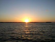 Изображение захода солнца Робина Стоковое Фото