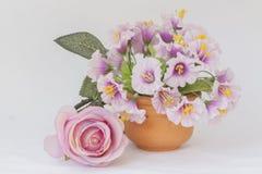 Изображение изолята розового цветка в гончарне стоковое фото