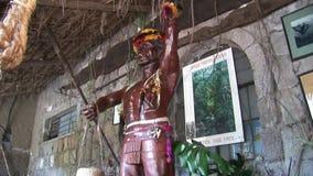 Изображение индигенных индейцев и Shuar Guarani акции видеоматериалы