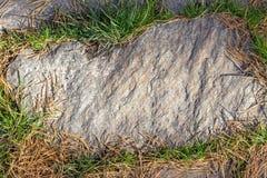 изображение каменной текстуры тропы с зеленой травой вокруг стоковое фото rf