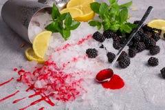 Изображение конца-вверх ведра с льдом и ложкой с сладостным вареньем на серой предпосылке Куча мяты и ежевик Стоковое фото RF