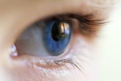 Изображение конца-вверх голубого человеческого глаза с ресницами Стоковая Фотография RF
