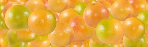 Изображение конца-вверх много очень вкусного зрелого апельсинов стоковые изображения