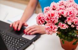 Изображение конца-вверх молодого профессионального женского менеджера используя компьтер-книжку на ее офисе, коммерсантку работая Стоковые Фотографии RF