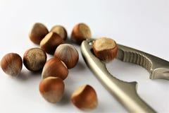 Изображение концепции Щелкунчика - гаек, еды Стоковое фото RF