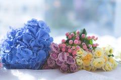 Изображение красивых роз брызга, гортензия, зверобой на светлой предпосылке стоковая фотография rf