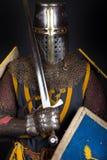 изображение крестоносца стоковое фото
