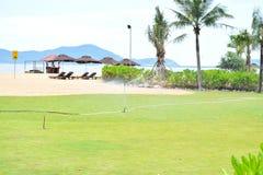 изображение курорта назад смолотое в природе солнечный день Стоковая Фотография RF
