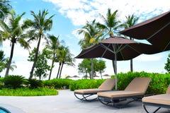 изображение курорта назад смолотое в природе солнечный день Стоковое Изображение
