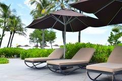 изображение курорта назад смолотое в природе солнечный день Стоковые Фотографии RF