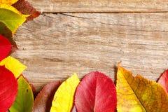 изображение листьев осени над деревянной текстурированной предпосылкой стоковые изображения rf
