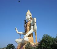 Изображение лорда Shiva во фронте внутри деревья на Gujrat в Индии стоковое изображение