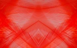 Изображение макроса предпосылки красного пера Стоковые Фото