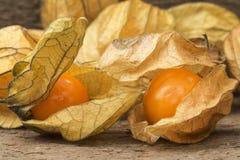 Изображение макроса свежих ягод physallis стоковая фотография rf