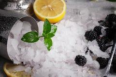 Изображение макроса сияющих холодных кубов льда Заморозьте с ежевиками, лимоном отрезка, и листьями мяты Свежие ингридиенты для к Стоковое Фото