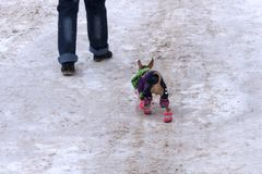 Изображение меньшего модника идя с собакой стоковое изображение rf
