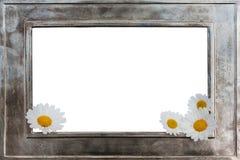 изображение металла рамки цветков Стоковые Изображения