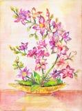 Изображение орхидеи букет цветет пинк Крытый завод Диаграмма oi Стоковые Фотографии RF