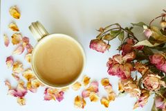 Изображение предпосылки осени с сухими розами и wi чашки кофе Стоковые Фото