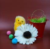 Изображение приветствию пасхи Цыпленок с красным bascet, и цветок стоковое изображение