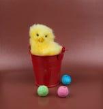 Изображение приветствию пасхи Цыпленок с красным bascet стоковое фото