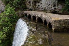 Изображение пропускать вниз с воды и водорослей стоковая фотография rf