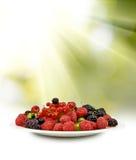 Изображение различных ягод в конце-вверх плиты Стоковое Изображение RF