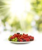 Изображение различных ягод в крупном плане плиты Стоковое Изображение RF