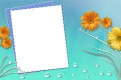 изображение рамки Стоковые Фото