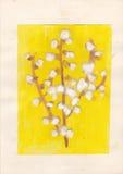 Изображение ребенка цветений вербы козы стоковое изображение rf