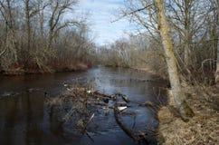 Изображение реки осенью Стоковое Изображение RF