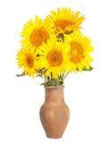 Изображение сбора винограда деревенской вазы с цветками Стоковые Изображения RF