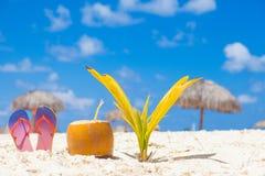 Изображение свежего коктеиля кокоса и красных темповых сальто сальто на тропическом пляже около малой пальмы Стоковые Фото