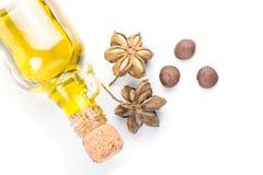 Изображение семени арахиса inchi sacha Стоковые Фотографии RF