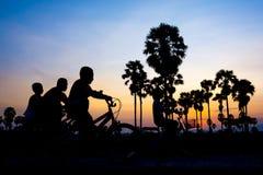 Изображение силуэта детей ехать велосипед в вечере Стоковое Изображение RF