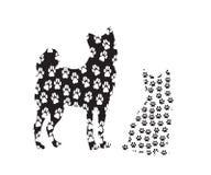 Изображение собаки и кошки в следах Стоковое Фото