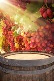 Изображение старого бочонка вина дуба перед ландшафтом двора вина Полезный для монтажа дисплея продукта Стоковая Фотография RF