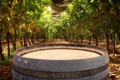 Изображение старого бочонка вина дуба перед ландшафтом двора вина Полезный для монтажа дисплея продукта Стоковое Фото