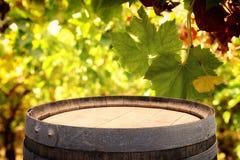 Изображение старого бочонка вина дуба перед ландшафтом двора вина Полезный для монтажа дисплея продукта Стоковые Фотографии RF