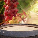 Изображение старого бочонка вина дуба перед ландшафтом двора вина Полезный для монтажа дисплея продукта Стоковое Изображение