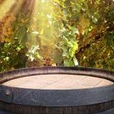 Изображение старого бочонка вина дуба перед ландшафтом двора вина Полезный для монтажа дисплея продукта Стоковое Изображение RF