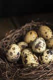 Изображение стиля унылого естественного освещения винтажное ретро quaills eggs Стоковое Изображение RF