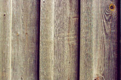 Изображение текстуры естественной предпосылки старой сосны всходит на борт Стоковая Фотография RF