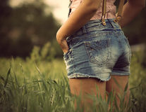 Изображение травы лета стоковое изображение rf