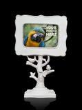 изображение фото шахты рамки птицы Стоковые Фотографии RF