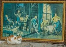 Изображение фронта сна кота Стоковая Фотография RF
