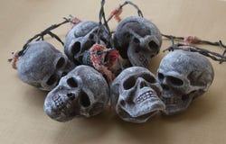 Изображение черепа Стоковая Фотография RF
