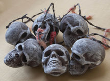 Изображение черепа Стоковое Изображение