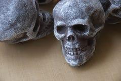 Изображение черепа стоковые изображения rf